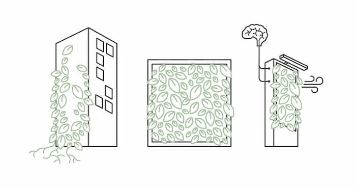 انواع حالت های دیوار سبز