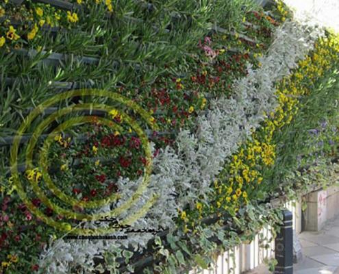 دیوار سبز اجرا شده توسط شرکت چوب و چکش Cover