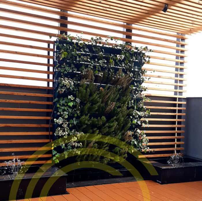 زیباسازی محیط با استفاده از دیوار سبز
