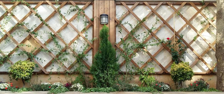 گرین وال یا دیوار سبز طراحی شده توسط شرکت چوب و چکش قزوین